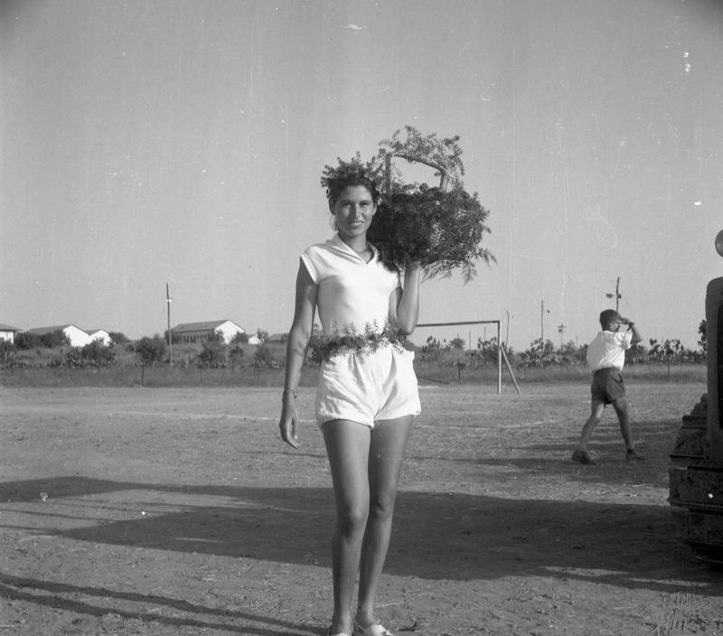 שבועות בשנות החמישים- משחקי אסיף מירה'לה חרובי